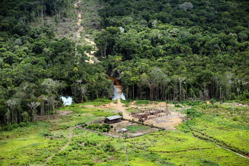 dalla-calabria-alla-foresta-amazzonica:-la-storia-di-giulia,-la-28enne-che-aiuta-gli-indigeni