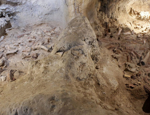 Scoperta eccezionale: resti di uomini di Neanderthal al Circeo