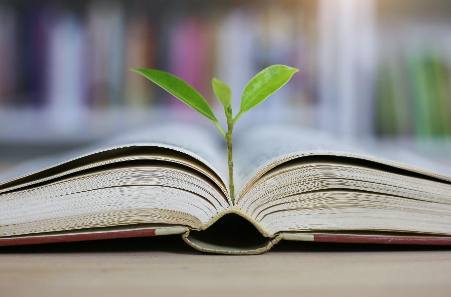 educazione-e-sostenibilita,-nel-nuovo-episodio-del-podcast-wired-future