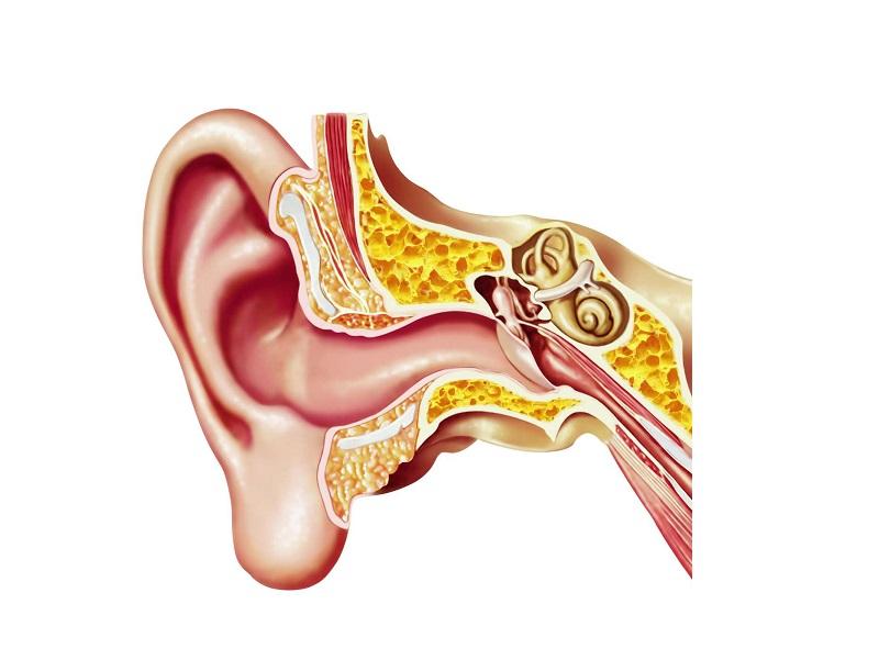 torna-l'appuntamento-con-l'ambulatorio-dell'udito,-gli-specialisti-che-rispondono-in-diretta-ai-cittadini.