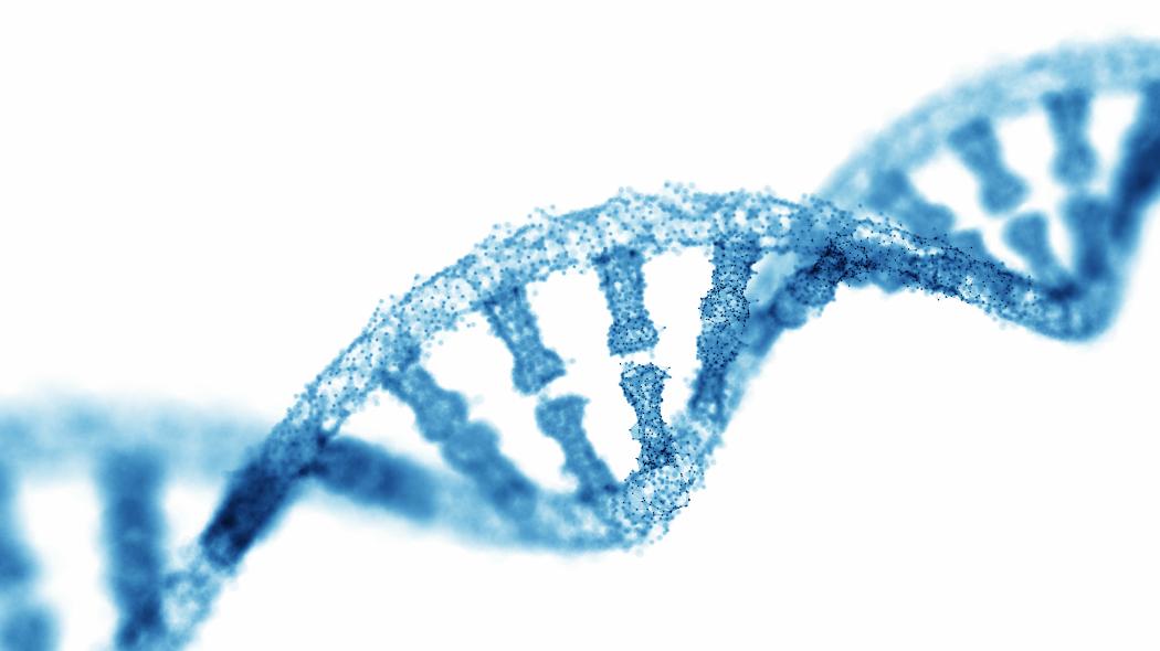 ecco-finalmente-la-mappa-dell'intero-genoma-umano