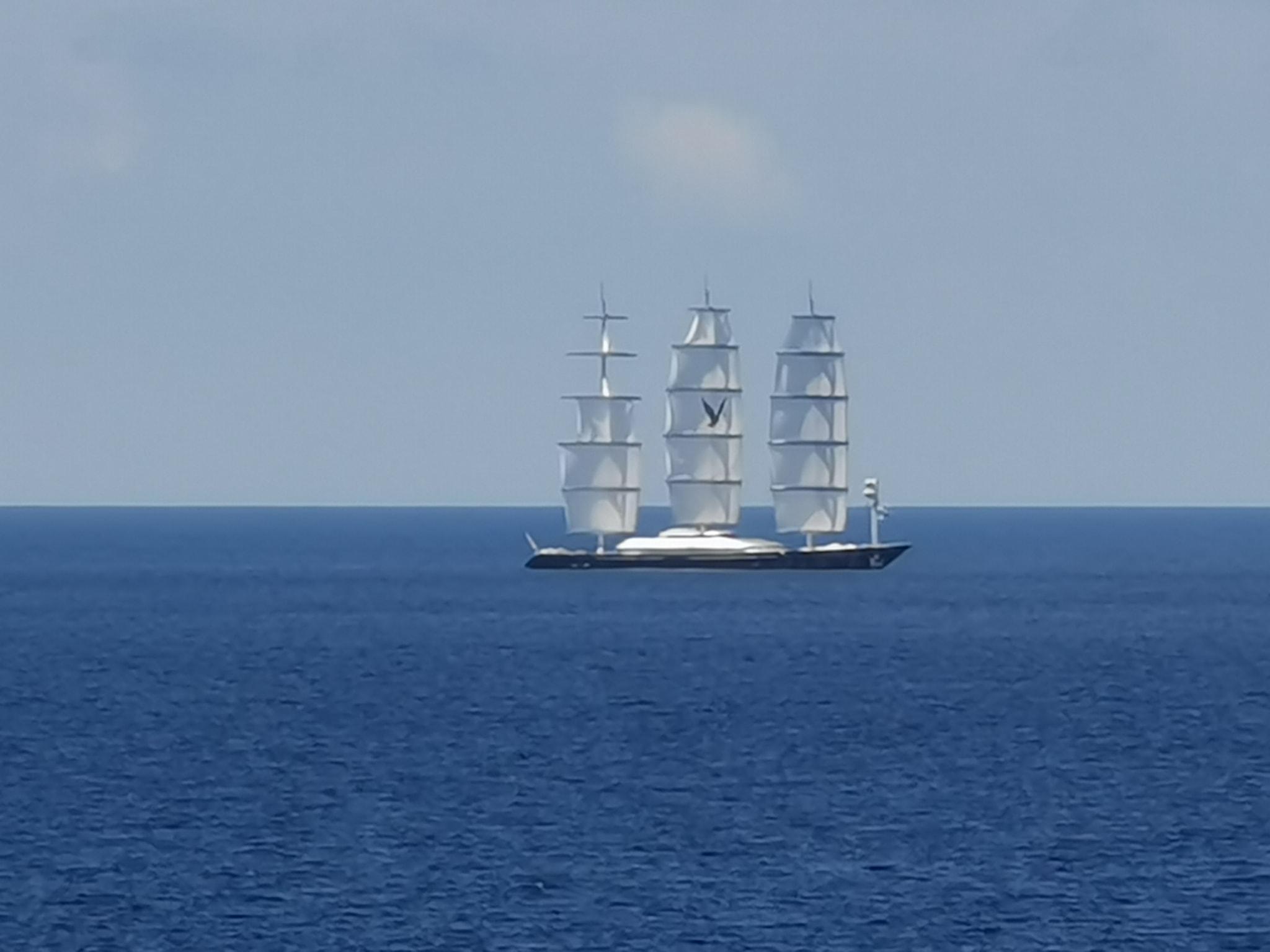 il-maltese-falcon-avvistato-nelle-acque-dello-stretto:-il-maestoso-'rapace'-passa-fra-messina-e-reggio-calabria-[gallery]
