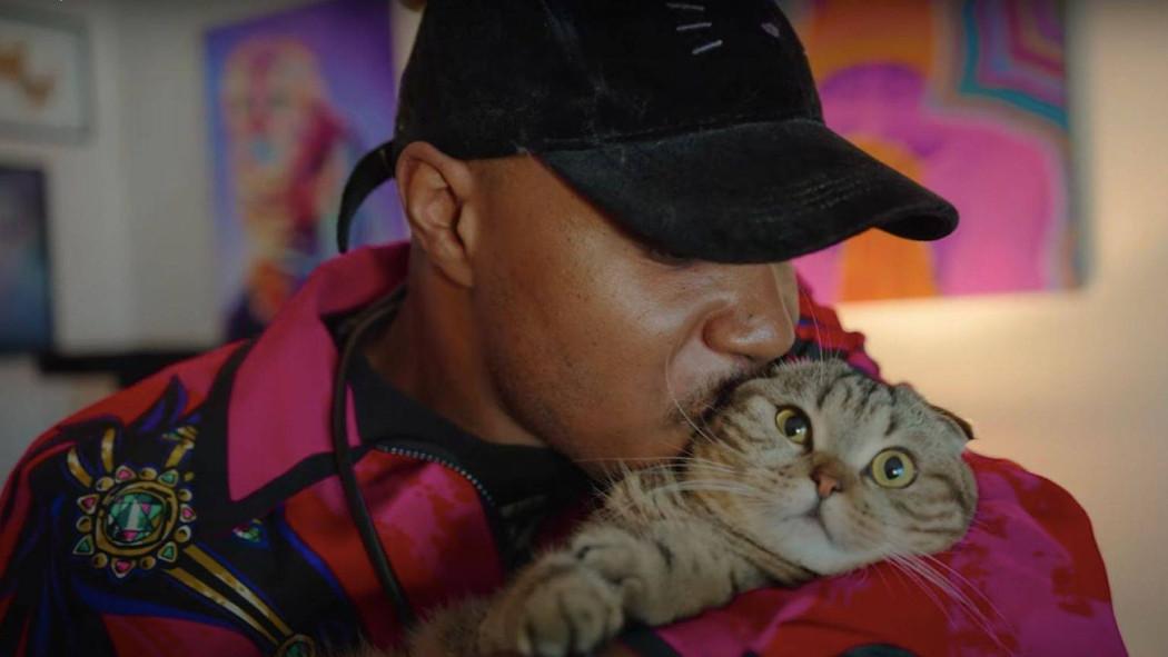 arriva-cat-people,-la-docuserie-per-gli-amanti-dei-gatti