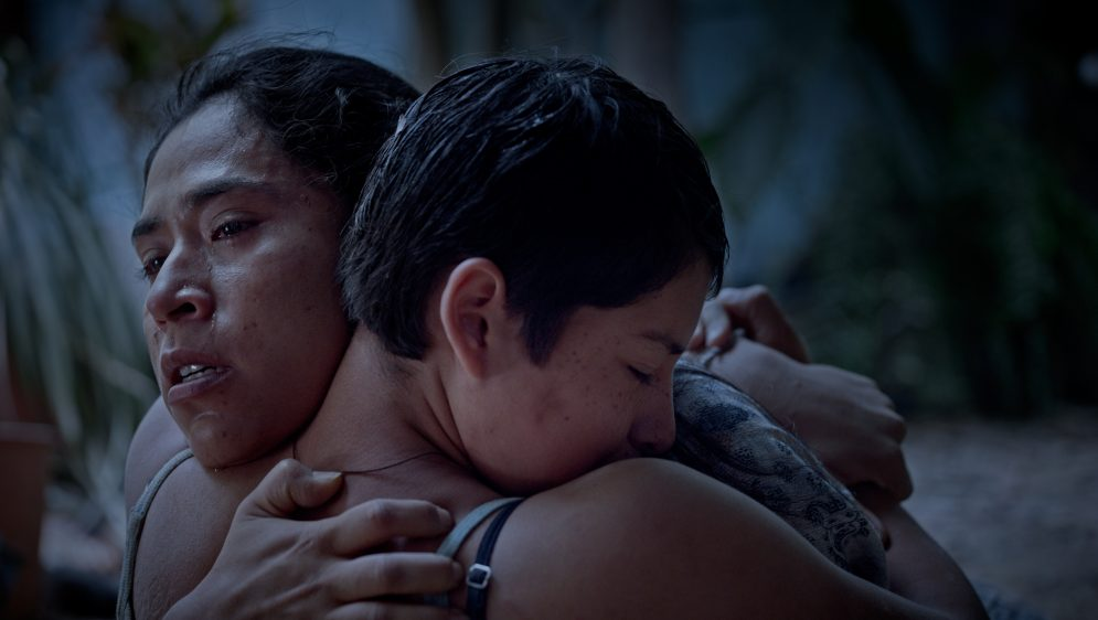 'prayers-for-the-stolen'-review:-a-poetic,-profound-portrait-of-growing-up-a-girl-in-cartel-land